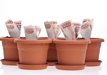 В какой МФО можно взять срочно онлайн займ до 5000 рублей на карту?